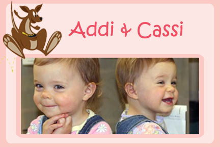 addi-and-cassi