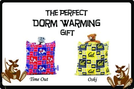 Dorm Warming Pilloroos